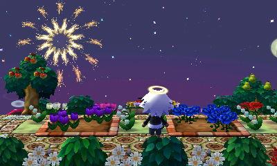 花火が上がってます♪