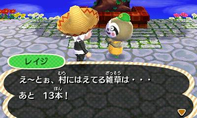 雑草13本(少なっ